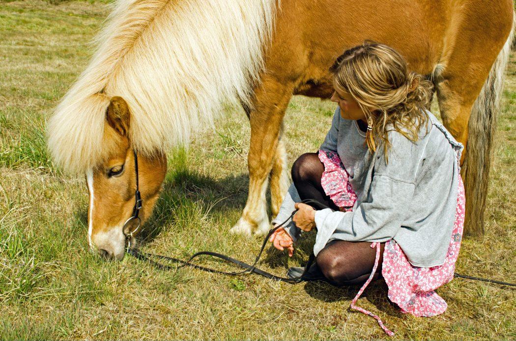 """Spirituelt lederskab til sensitive mennesker: """"Med hesten som guide"""""""